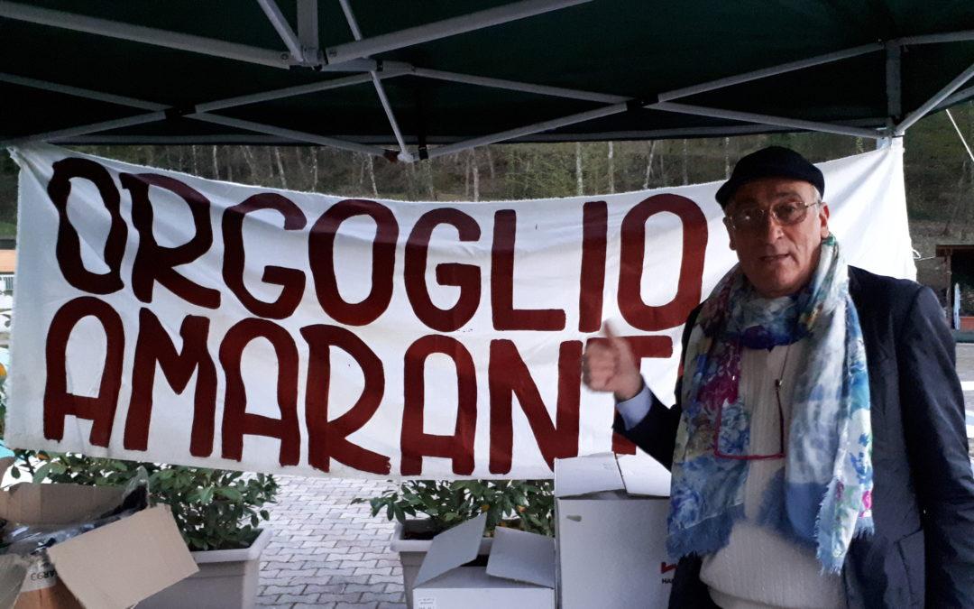 ORGOGLIO AMARANTO per Ail Arezzo ONLUS